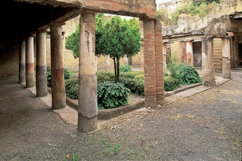 Herculaneum Tour